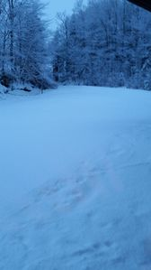 View from porch. Ski in. Ski out.