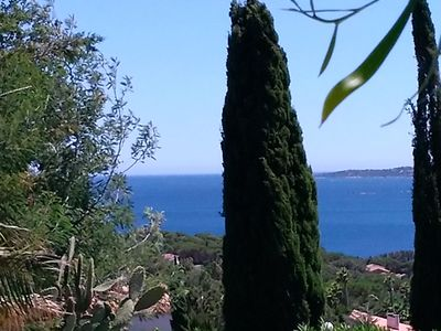 Photo for MAGNIFICENT STUDIO IN RESIDENCE 3 * IN ISSAMBRES / GULF ST TROPEZ