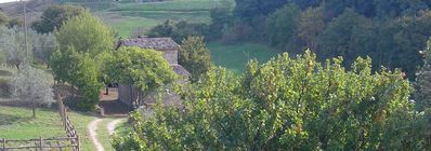 Photo for Mansion typical farmhouse with park countryside of Orvieto Umbria 6 places