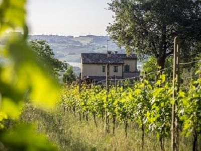 Photo for Luxury Country Accommodation With Warm Italian Welcome. A Haven Of Peace.