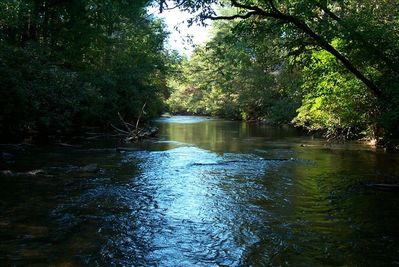 The beauty of the Etowah river...just steps away.