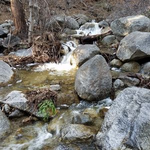 Photo for Beautiful Creek-side Setting!