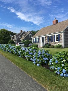 Classic Cape Cod Charm in Harwich Port!