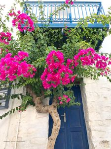 Photo for 1BR House Vacation Rental in Ano Syros