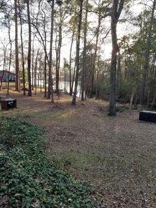 Photo for Cottage  2 bedroom 1 bath lake view and access at full pool. Six Mile on Toledo.
