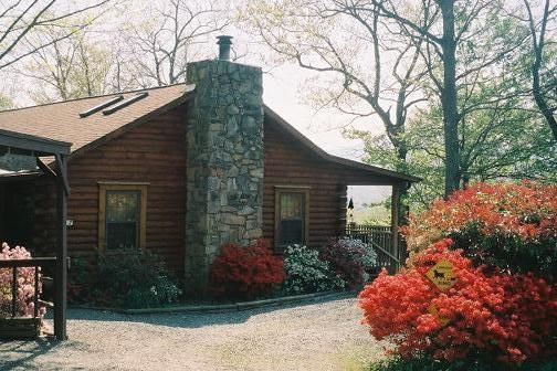 pet friendly cozy comfortable log cabin homeaway