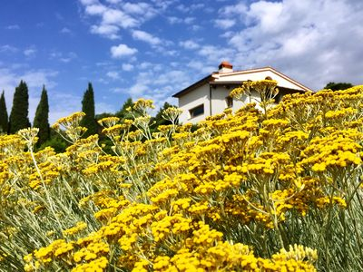 Photo for Villa in the heart of Tuscany with swimming pool and extraordinary panoramic position