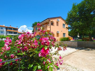 Photo for Apartment 1774/20436 (Istria - Liznjan), Budget accommodation, 1000m from the beach