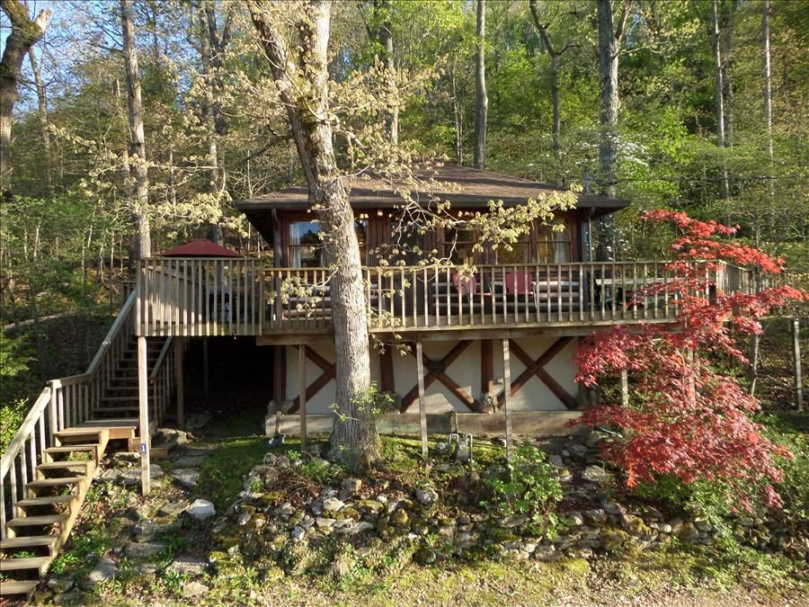 Lake lucerne 1930s treehouse cabin lake front amazing for Tree house cabins arkansas