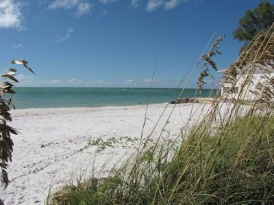 The sea oats, the sand, and beautiful gulf waters. Guess what?  It's your view!