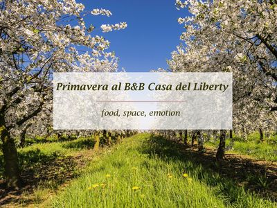 Photo for Casa del Liberty Sicily: food, holidays, folklore