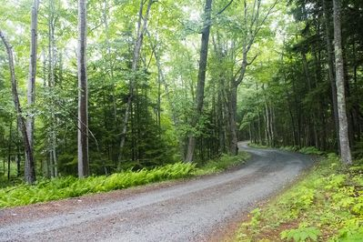 Enjoy a private oasis within walking distance of Acadia, the beach & Bar Harbor