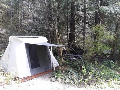 Rain forest glamping retreat camp 6