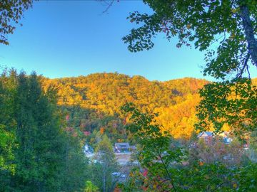 Walk to downtown Gatlinburg or fishing. Dog friendly with wi-fi, basketball more