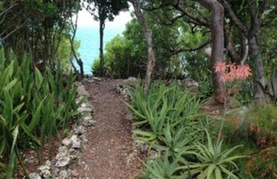 Photo for Private Bahamian Paradise