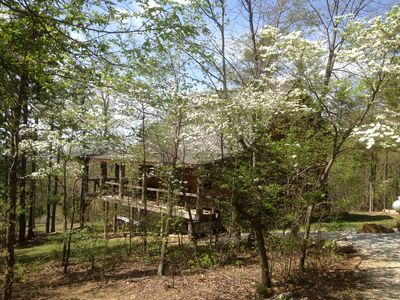 Photo for Dogwood Cabin of Deer Lodge Cabin Rentals Secluded Ozark Mointain Log Cabin