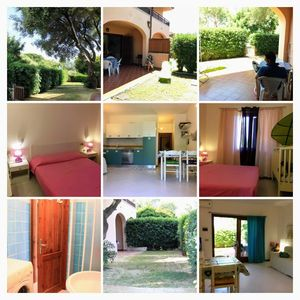 Photo for Old Olive Tree Terraced House with garden ST1