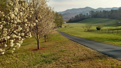 Photo for 1BR Apartment Vacation Rental in Franklin, North Carolina