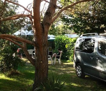 Photo for Camping La Pibola *** - ECO 3-room canvas bungalow 4 persons