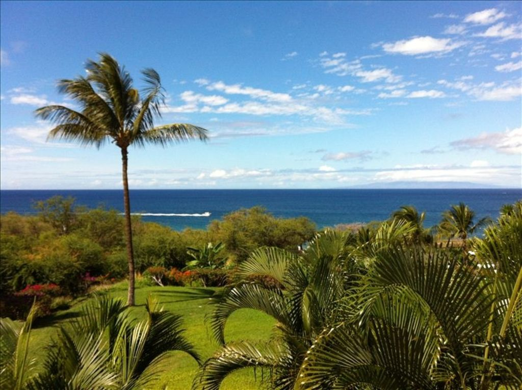 Awesome Ocean View Maui Condo 2bed 2 Vrbo