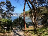 Harbour Hideaway near Manly