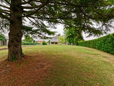 Photo for Wellness and Tranquility in the heart of Friuli, 2 rooms up to 6 guests