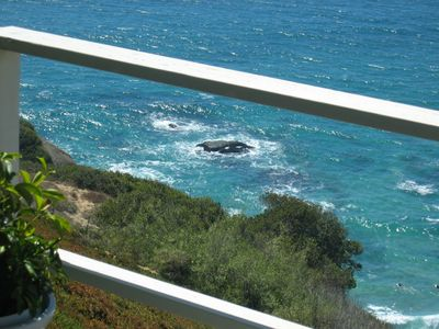 A VIEW & VACATION SPOT TO REMEMBER ...OCEANFRONT HEADLANDS I