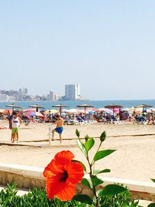 Photo for center nearest beach apartment Cullera