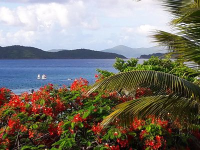 Photo for Sapphire by the Sea: 1 Bdrm Ocean View Condo at Sapphire Village, St Thomas