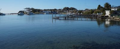 Currambene Creek - Complex Foreshore - looking back to Huskisson