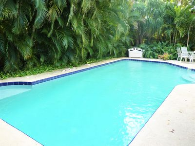 Full size pool surrounded by 20-30 foot tropical foliage.