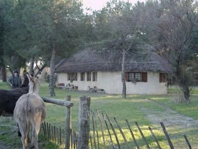 Photo for Gardian Aigues Mortes cabin-style house rental