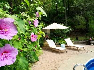 Photo for Woodland Serenity near West Point & hiking trails, Cold Spring, Beacon!