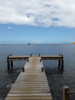 Photo for Magnificent T2 Beachfront, pontoon access to the sea, small garden.