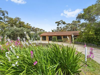 Photo for 12 FOURTH AVENUE - Anglesea, VIC