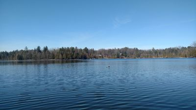 Photo for Beautiful House On Stronach Creek With Cool Lake Access