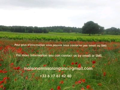 Photo for Provence countryside, new villa, benefits all comfort, swimming pool