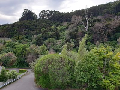 Photo for Sunny apartment  with bush clad outlook, only 10 minutes walk from the township