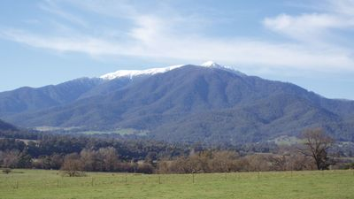 Photo for Bogong View ...>>>>>