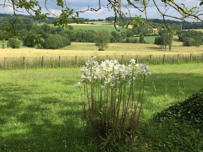 Photo for Looking for a cosy cottage in the peaceful Dordogne/Charente area? You found it.