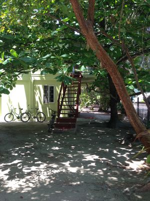 Photo for Charming Garden Studio Located in the Lush Island Jungle of Caye Caulker