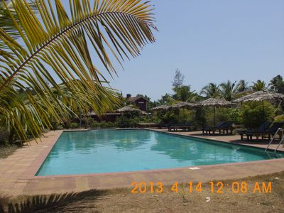 Olympic size Swimming Pool with Pool Loungers & Coconut Umbrellas