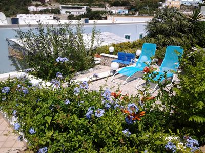 Photo for 2BR Apartment Vacation Rental in Ponza