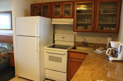 Fully equipped kitchen with ice maker, blender, coffee maker etc.