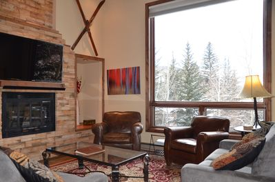 Living Room - Vaulted Ceilings, Working Fire Place, HDTV, Views of the Mountain