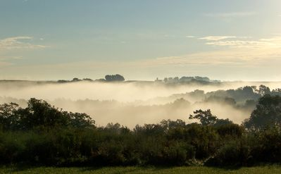 View of morning fog from the cottage porch.