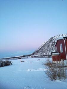 Photo for Holiday house in beautiful surroundings in Lofoten with beautiful views