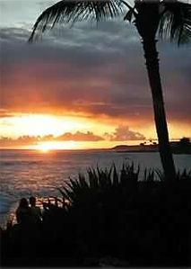 Photo for Poipu Oceanfront Dream Getaway at Kuhio Shores! 30 feet from the waters edge!!!