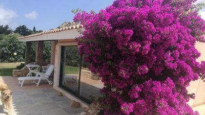 Photo for Independent villa immersed in the Mediterranean scrub just a few kilometers from the sea.
