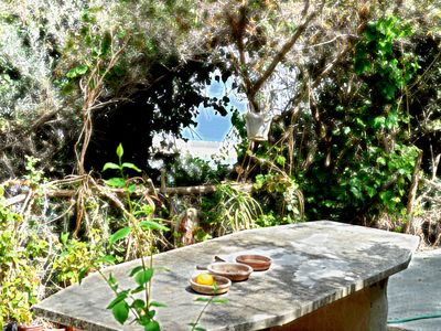 Photo for Beautiful and typical sicilian country house with sea view in Capo d'Orlando